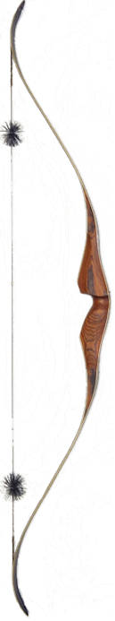 Galaxy Black Ridge One-Piece Recurve Bow back